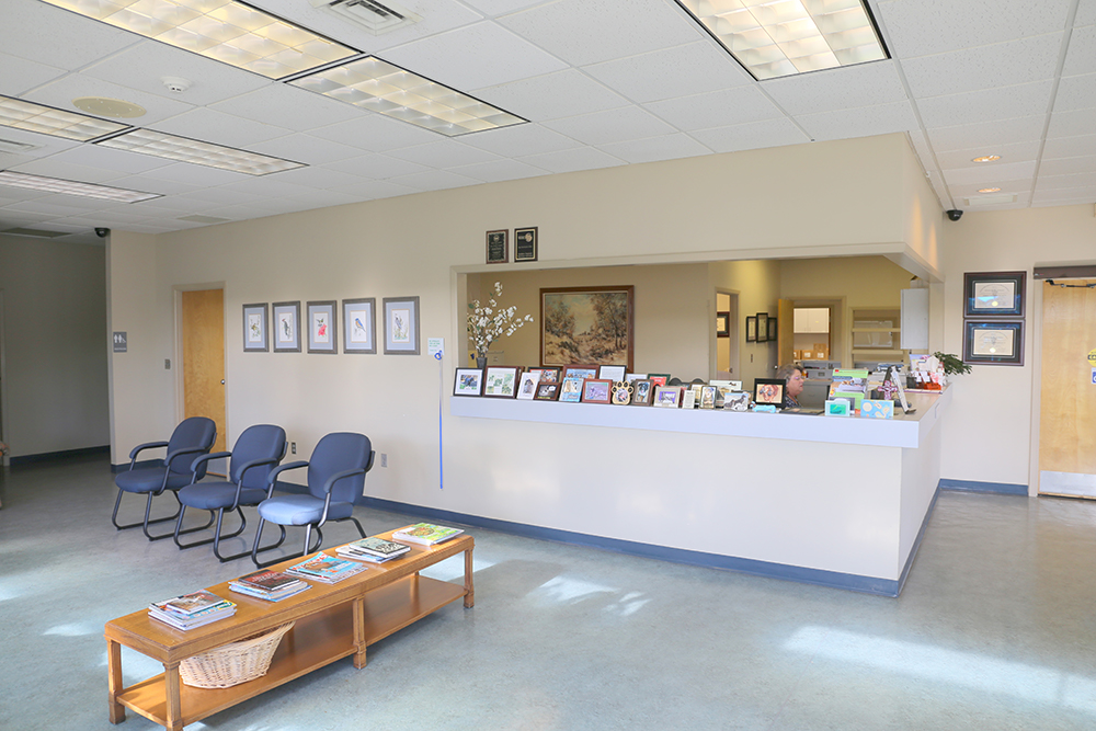 Veterinary waiting and reception area